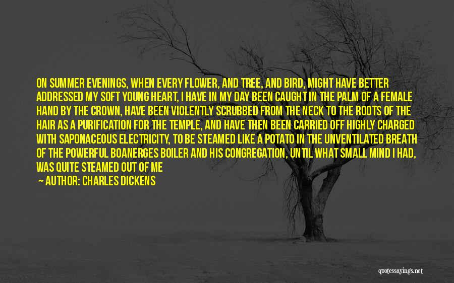 Funny Summer Quotes By Charles Dickens