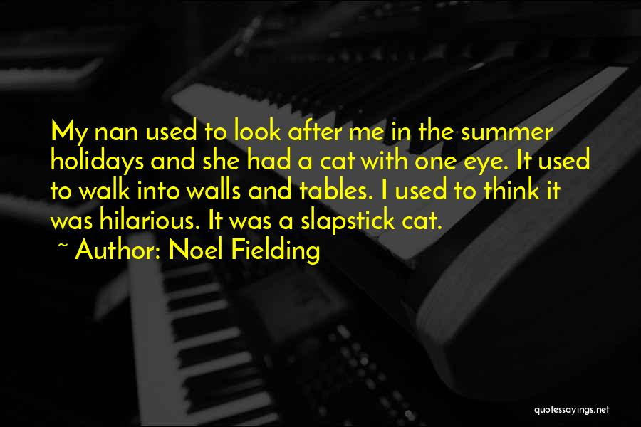 Funny Summer Quotes By Noel Fielding