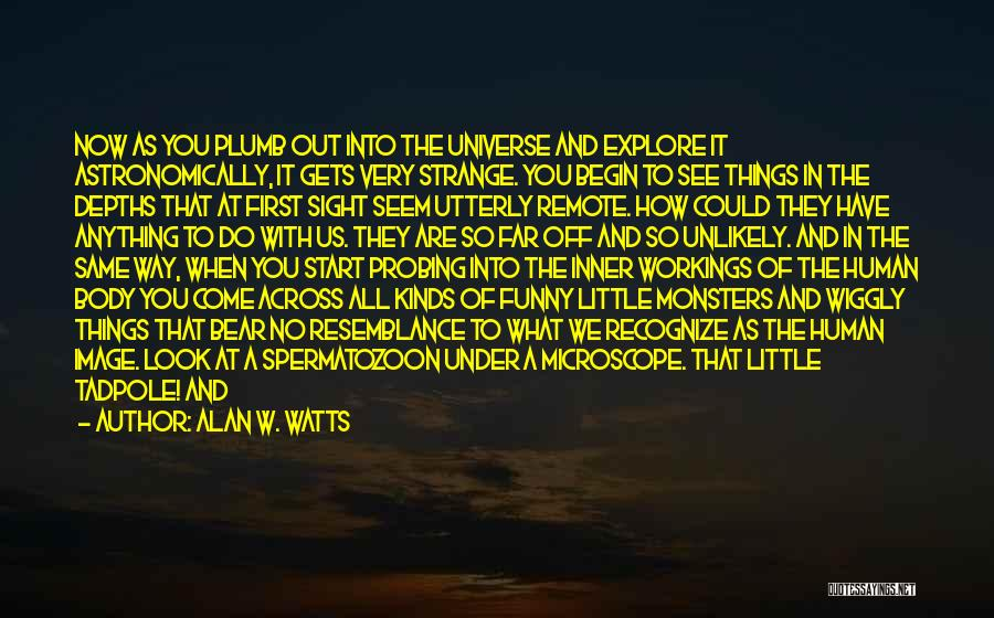 Funny Things About Life Quotes By Alan W. Watts