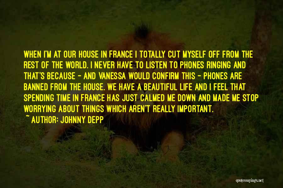 Funny Things About Life Quotes By Johnny Depp
