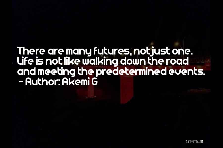 Future And Destiny Quotes By Akemi G