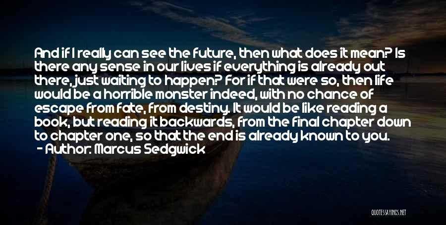 Future And Destiny Quotes By Marcus Sedgwick