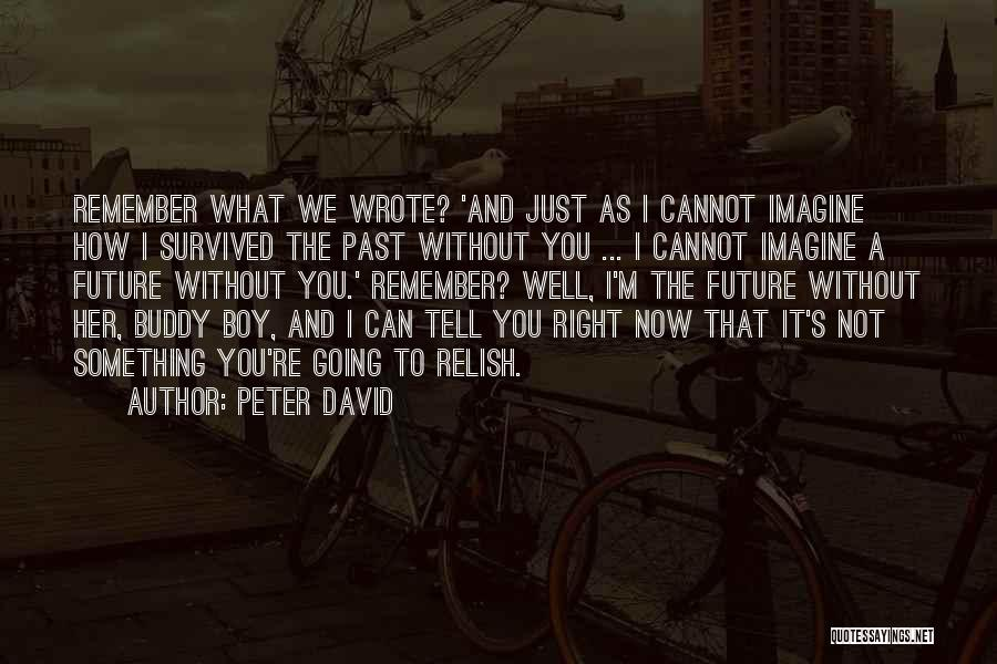 Future Not Past Quotes By Peter David