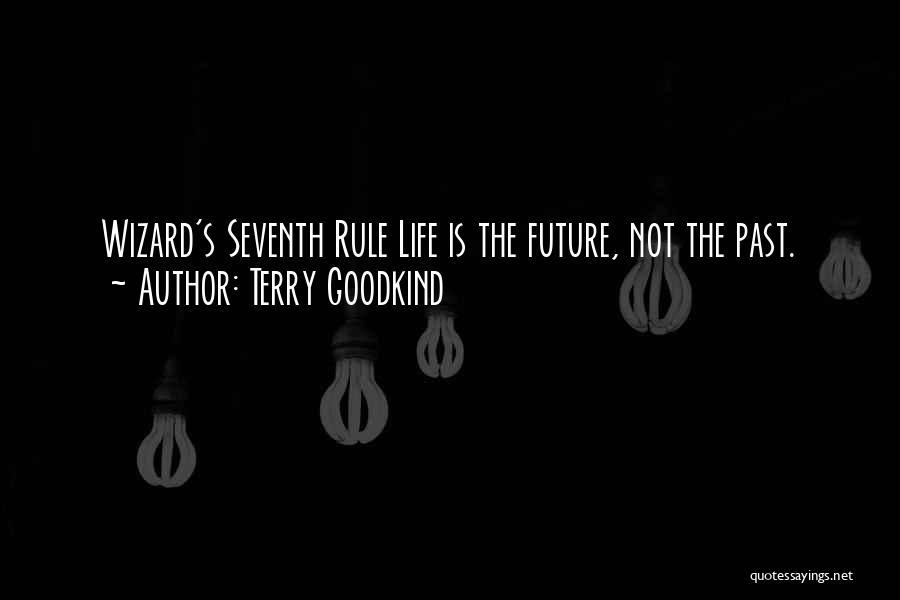 Future Not Past Quotes By Terry Goodkind