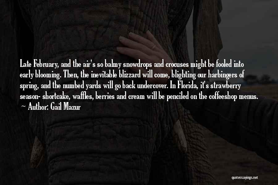 Gail Mazur Quotes 1064200