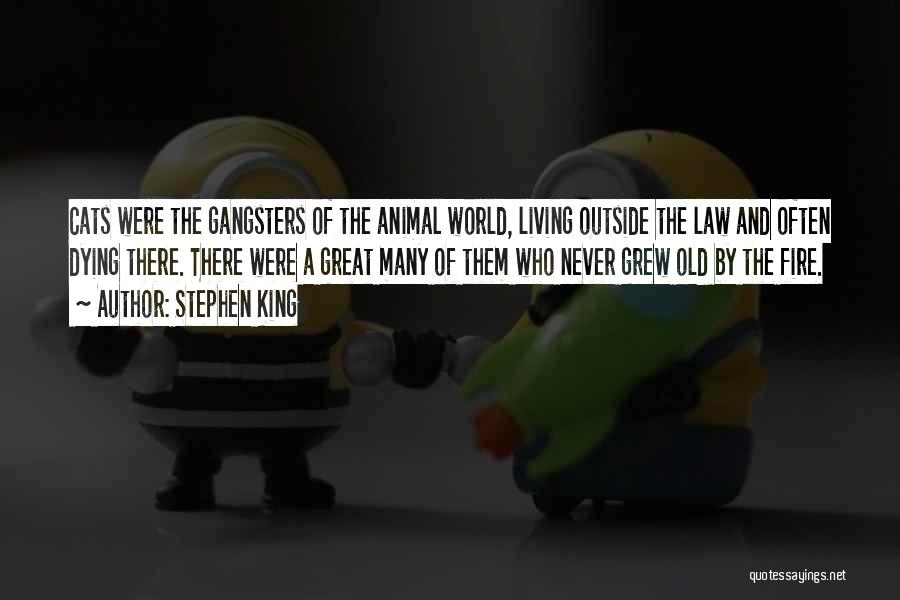 Gangsters Quotes By Stephen King