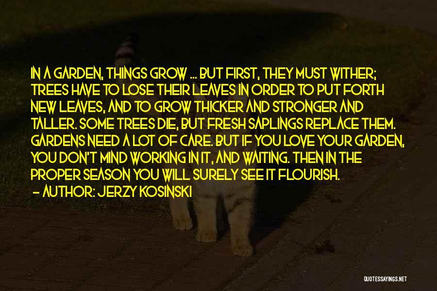 Garden Care Quotes By Jerzy Kosinski