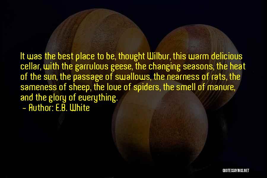 Garrulous Quotes By E.B. White