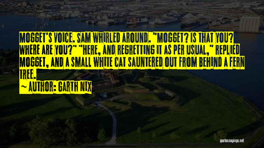 Garth Nix Quotes 1318202