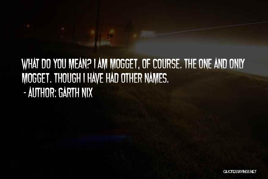 Garth Nix Quotes 345337