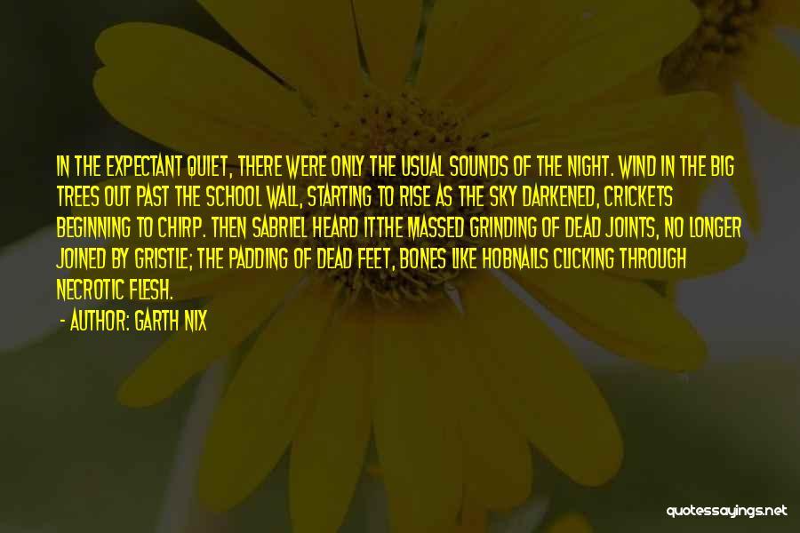 Garth Nix Quotes 78808