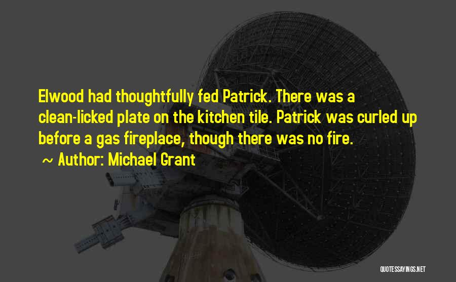 Gas Fireplace Quotes By Michael Grant