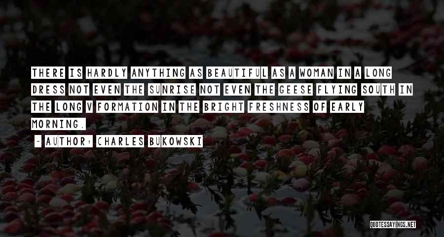 Geese Flying Quotes By Charles Bukowski