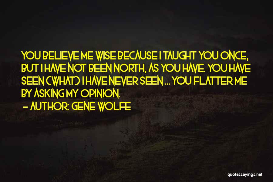Gene Wolfe Quotes 2135973