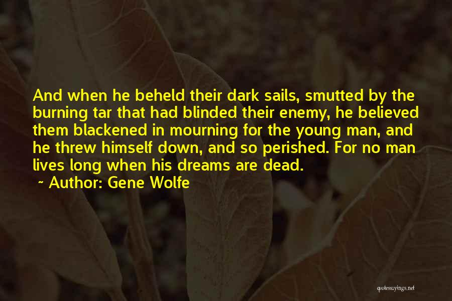 Gene Wolfe Quotes 2256701
