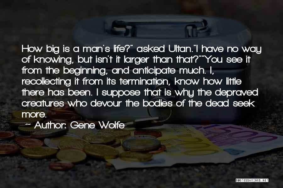 Gene Wolfe Quotes 359210