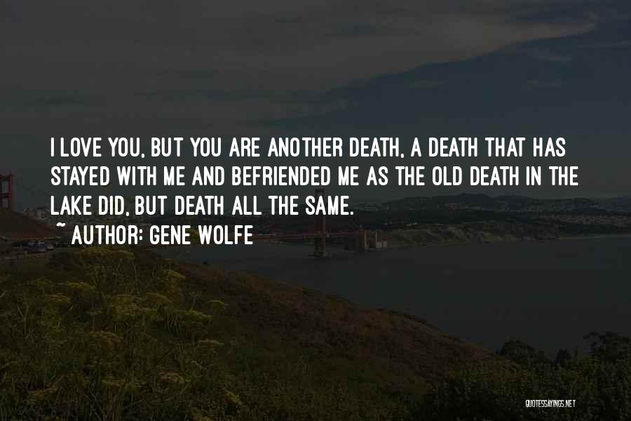Gene Wolfe Quotes 652810