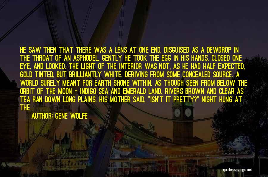 Gene Wolfe Quotes 691927