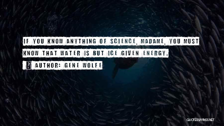 Gene Wolfe Quotes 933556