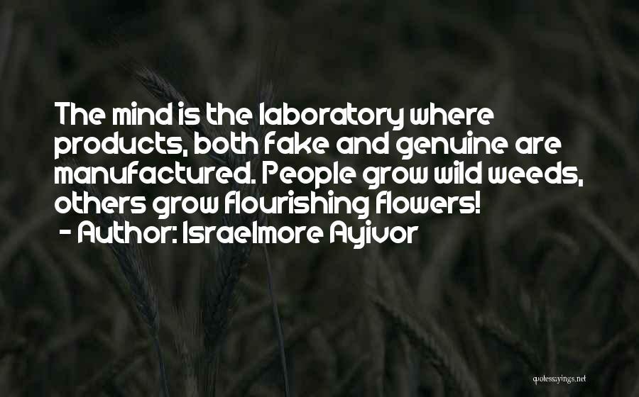 Genius Mind Quotes By Israelmore Ayivor