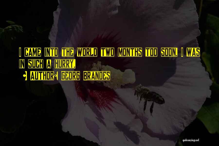 Georg Brandes Quotes 1392243