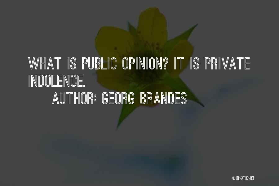 Georg Brandes Quotes 1782774