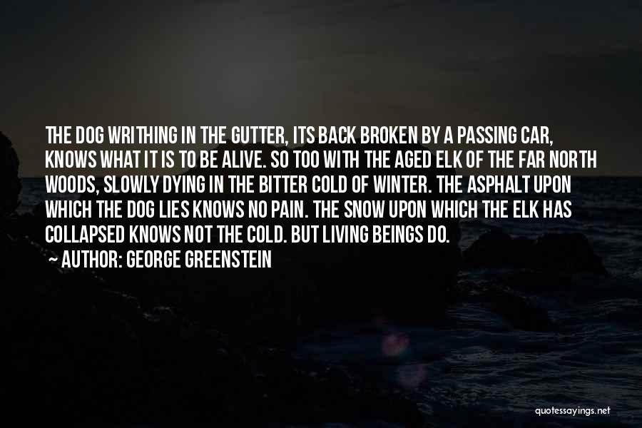 George Greenstein Quotes 206690