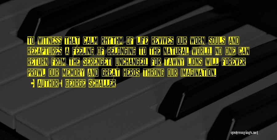 George Schaller Quotes 1097235