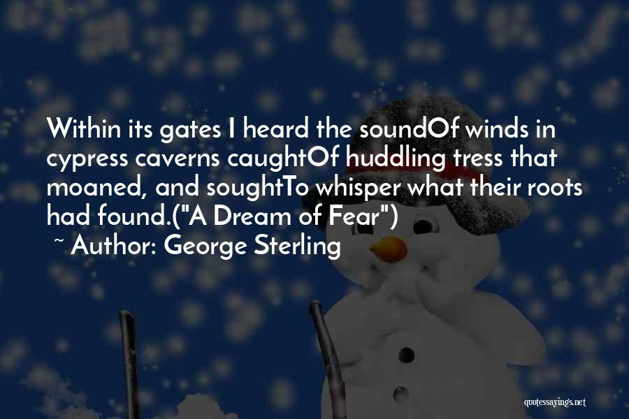 George Sterling Quotes 961366