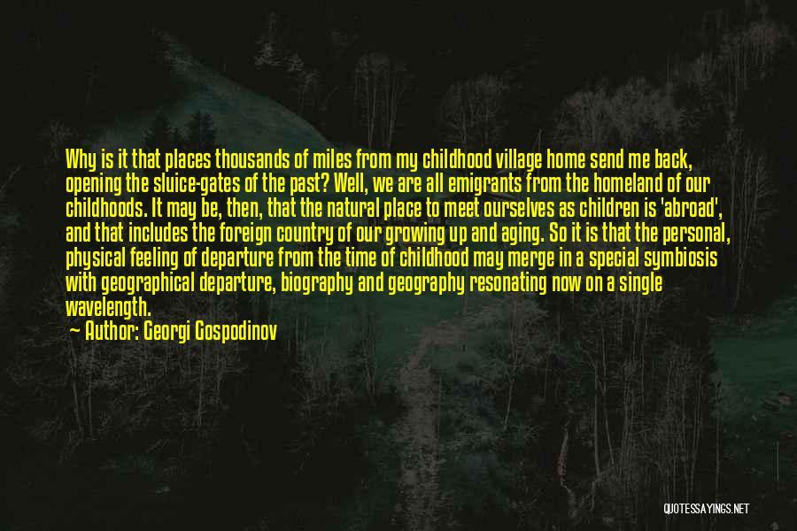 Georgi Gospodinov Quotes 1096478