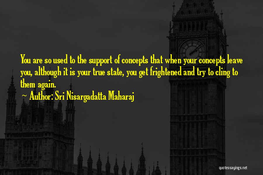 Get Support Quotes By Sri Nisargadatta Maharaj