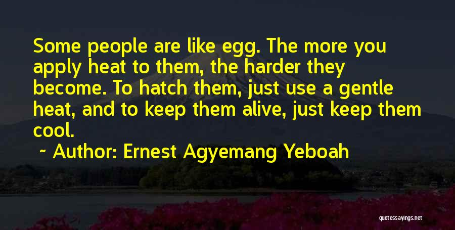Getting To Know Someone You Like Quotes By Ernest Agyemang Yeboah