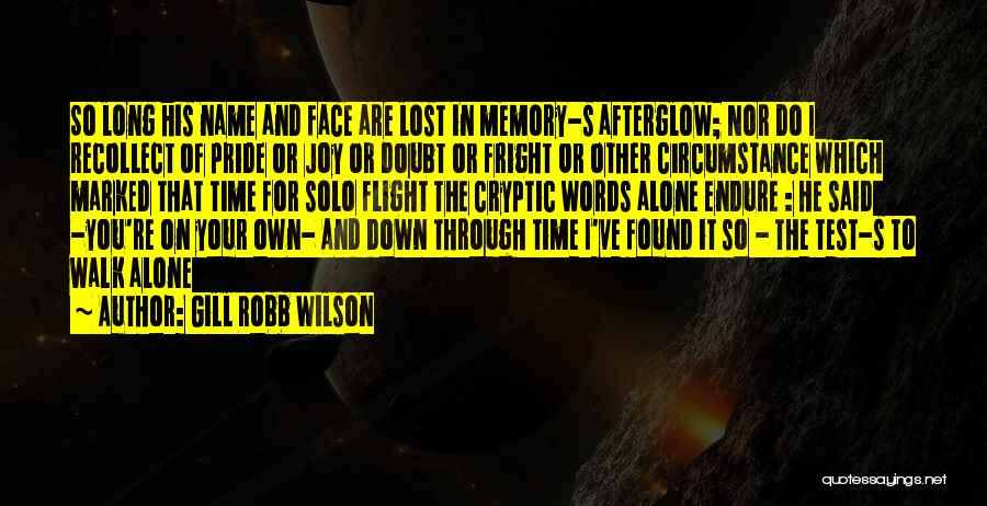 Gill Robb Wilson Quotes 1311835