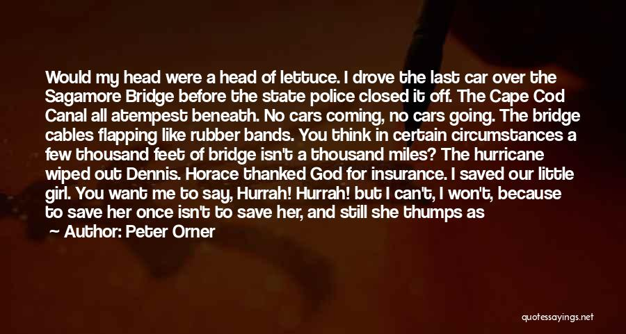 Girl On The Bridge Quotes By Peter Orner