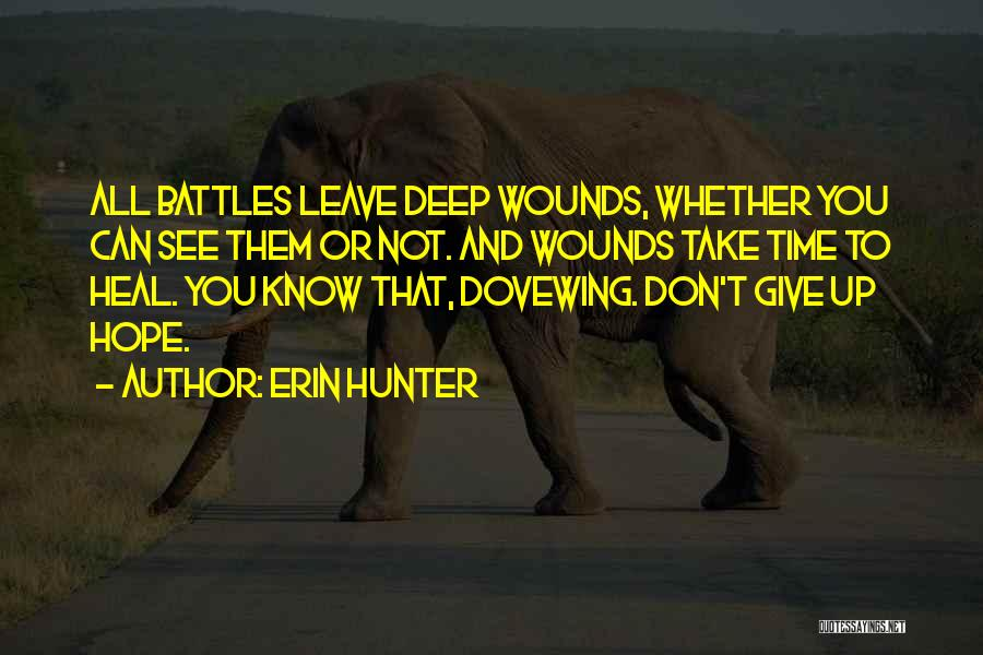 Give Yourself Time To Heal Quotes By Erin Hunter