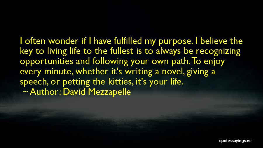 Giving A Speech Quotes By David Mezzapelle