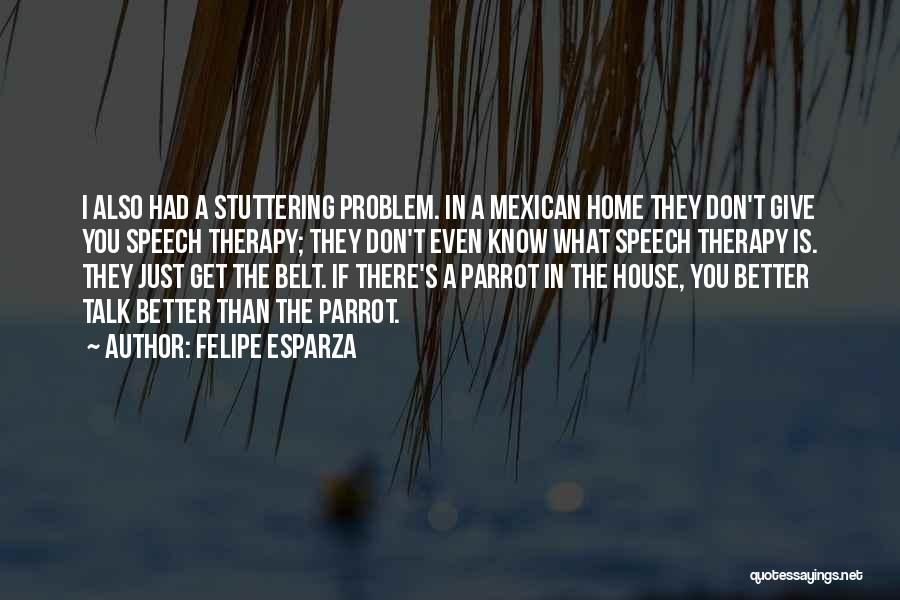 Giving A Speech Quotes By Felipe Esparza