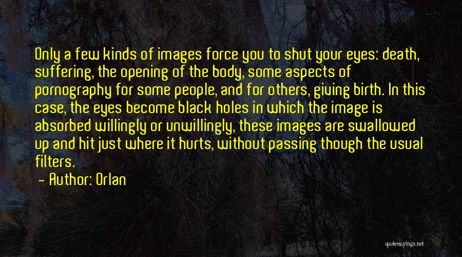 Giving Birth Quotes By Orlan