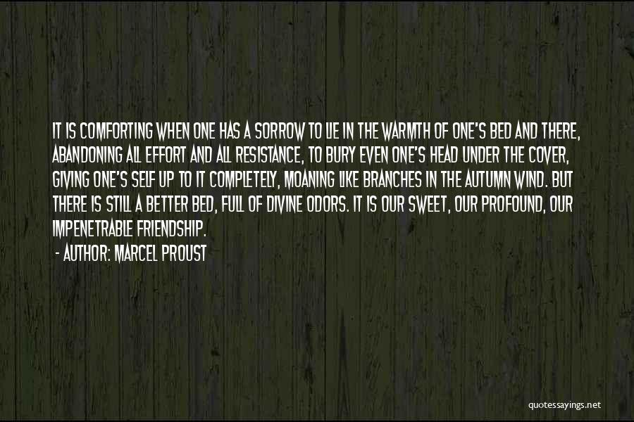 Giving Up Friendship Quotes By Marcel Proust