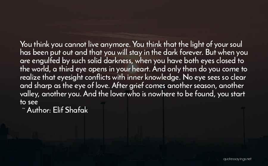 Glittering Love Quotes By Elif Shafak