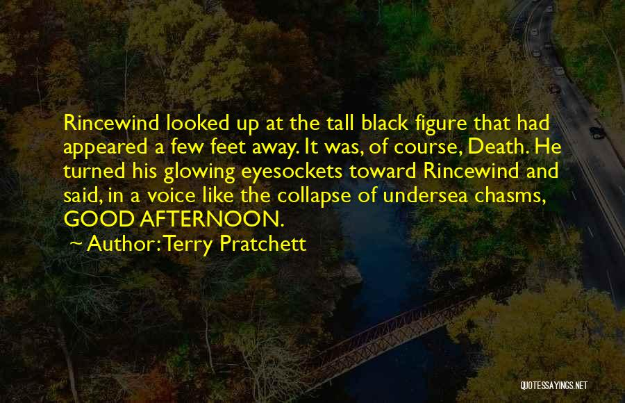 Glowing Up Quotes By Terry Pratchett