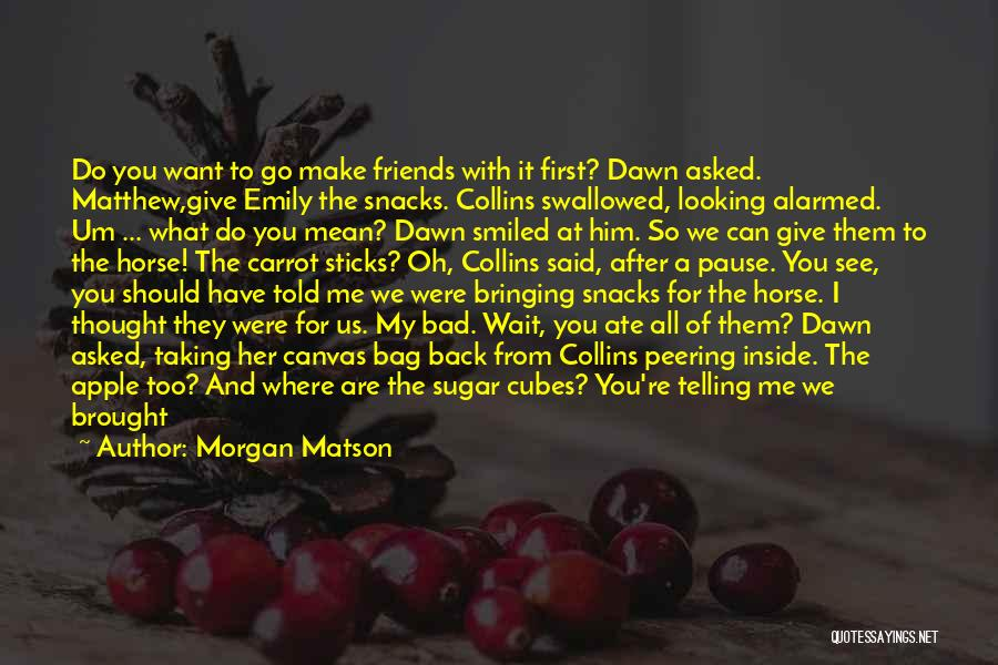 Go After Her Quotes By Morgan Matson