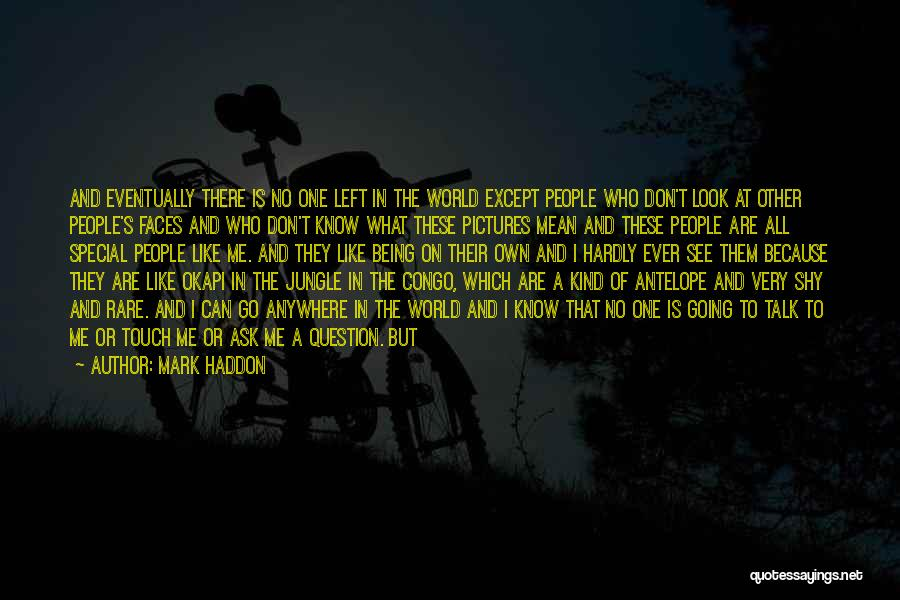 Go Back In Time Quotes By Mark Haddon