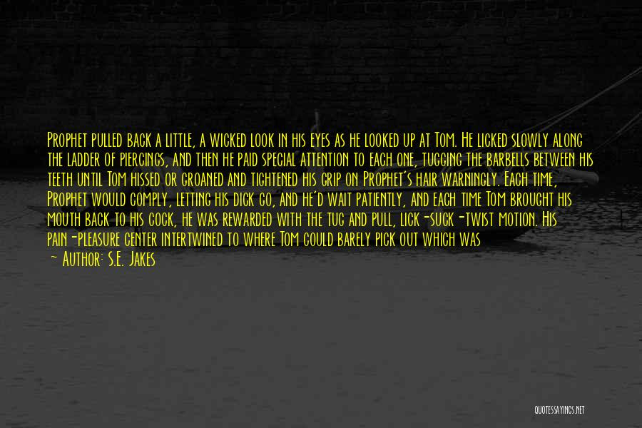 Go Back In Time Quotes By S.E. Jakes