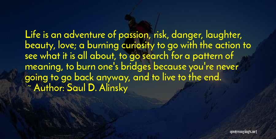 Go Back Love Quotes By Saul D. Alinsky