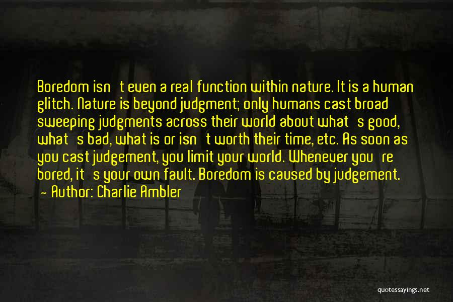Go Beyond The Limit Quotes By Charlie Ambler