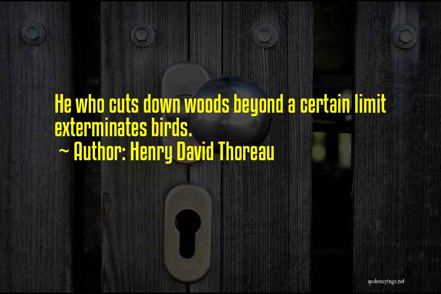 Go Beyond The Limit Quotes By Henry David Thoreau