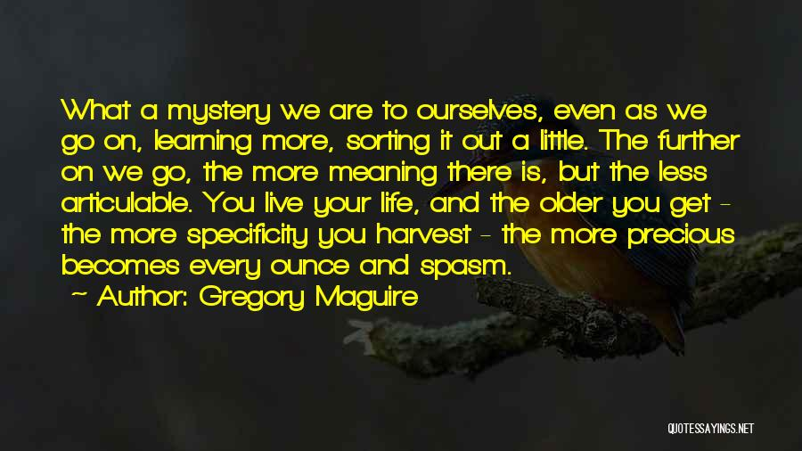 Go Get A Life Quotes By Gregory Maguire