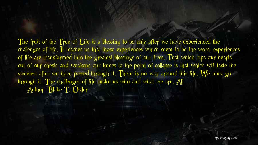 Go Out And Experience Life Quotes By Blake T. Ostler