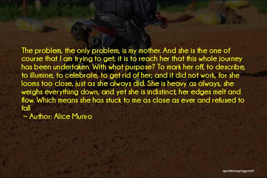 Go With The Flow Quotes By Alice Munro